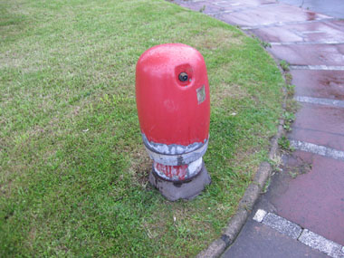 A fire hydrant